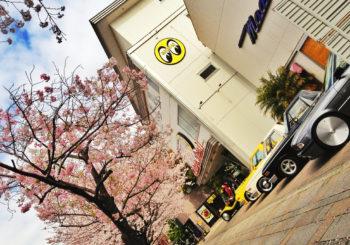 M2 Machines : Une série Mooneyes Auto-Japan
